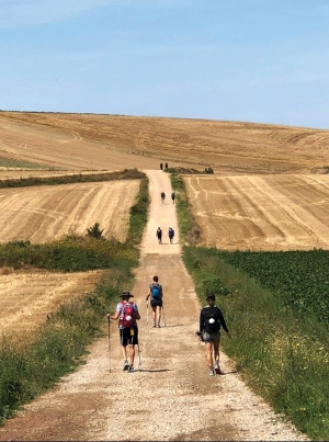 Father Bergbower recalls 'fullness and peace' of  Camino de Santiago  pilgrimage